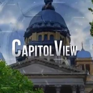 Capitol View Program Logo